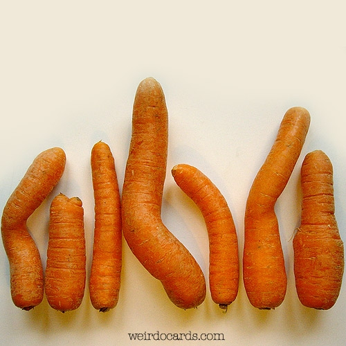 Happy Carrot Overdose Day eCard