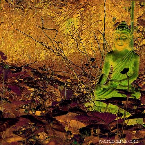 Buddha In The Garden eCard